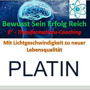 E HOCH 7 Transformations Coaching - Platinpaket